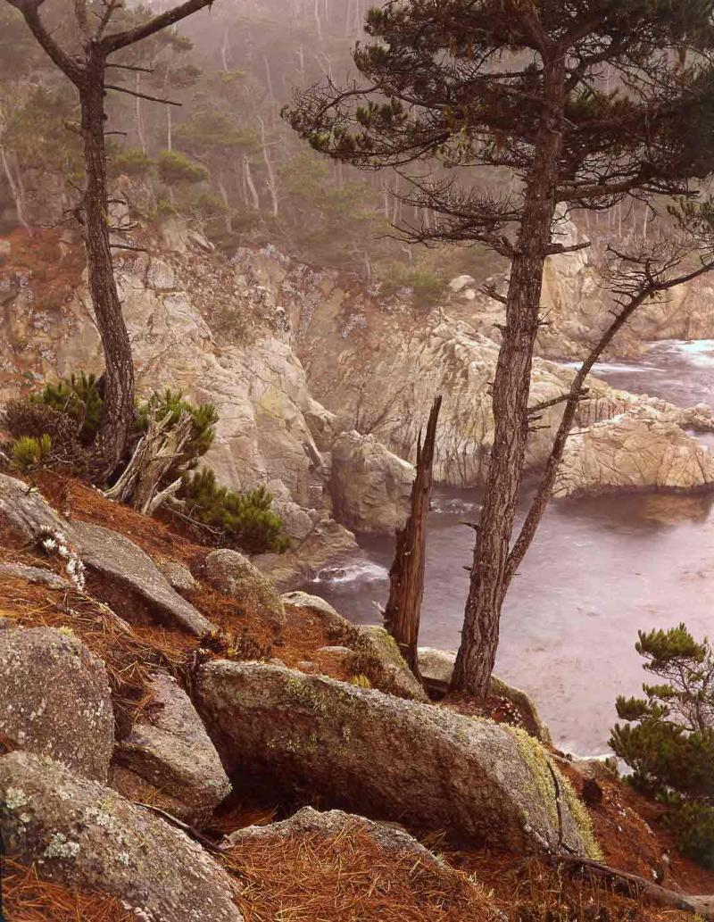 north shore in drizzle, Pt. Lobos, 1975